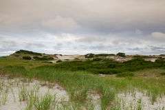 Sand dunes beach on the Cape Cod National Seashore on the Atlant Royalty Free Stock Photo