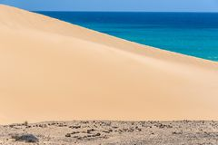 Sand dunes on the beach in Fuerteventura, Spain. Sand dunes on Sotavento Beach in Fuerteventura, Canary Islands, Spain Royalty Free Stock Image
