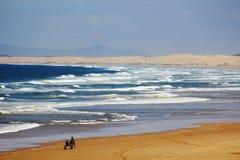 Sand dunes beach landscape Royalty Free Stock Photo