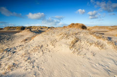 Sand dunes by beach at North sea Stock Photography