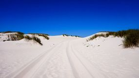 Sand dunes on beach in Portugal stock photo