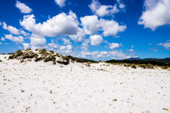 Sand dunes on a beach Stock Image
