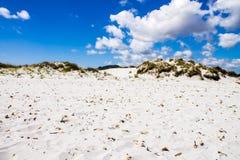 Sand dunes on a beach Stock Photography