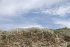 Sand dunes at beach Royalty Free Stock Images