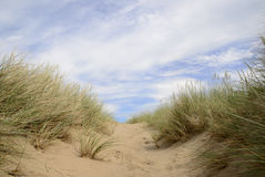Sand dunes at beach Stock Photo