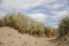 Sand dunes at beach Royalty Free Stock Photography