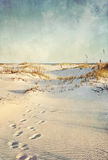 Sand Dunes at Beach Textured Landscape Stock Photos
