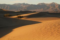 Sand dunes Stock Photography