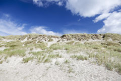 Sand dunes and blue sky. Danish West Coast. Stock Photography