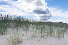 Sand dunes and blue sky. Soft daylight. closeup Stock Photography