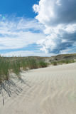 Sand dunes and blue sky. Vertical scenery Royalty Free Stock Images