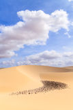 Sand dunes in Boavista desert with blue sky and clouds, Cape Ver Royalty Free Stock Photos