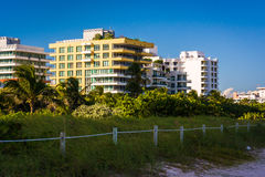 Sand dunes and buildings on the beach in Miami Beach, Florida. Royalty Free Stock Photography