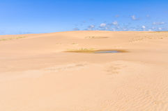 Sand dunes in Cabo Polonio, Uruguay Royalty Free Stock Image