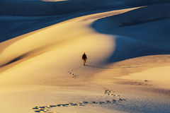 Sand dunes in California Royalty Free Stock Photography