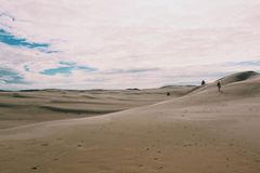 Sand dunes. Calming peace wallpaper scenery beautiful background tress leaves sanddunes Royalty Free Stock Image