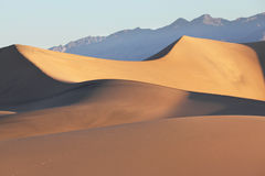 Sand dunes clearly and effectively lit sunrise Royalty Free Stock Photo