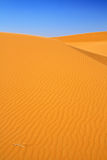 Sand dunes and cloudless blue sky Stock Photography