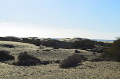 Sand dunes at the coast of Gran Canaria Stock Photo