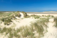 Sand dunes at the coast Stock Image