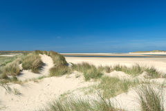 Sand dunes at the coast Royalty Free Stock Photos