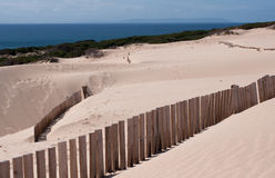 Sand dunes. Coastal defences and sand dunes in Cadiz province, Spain Stock Photo