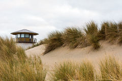 Sand dunes and coastal grasses. With a lighthouse lantern or navigation beacong on the horizon in Vlissingen, Zeeland, Netherlands Royalty Free Stock Photography