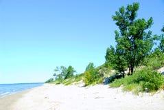 Sand dunes coastline Royalty Free Stock Photos