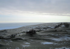 Sand dunes. Covered with snow in the rainy day Royalty Free Stock Image