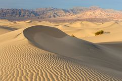 Sand dunes crescent Stock Image