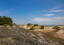 Sand dunes on the Curonian Spit stock photo