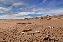 Sand dunes and dead wood. Wide angle photography of sand dunes with dead wood in Great Sand Dunes National Park Stock Photography