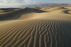 Sand Dunes Death Valley royalty free stock images
