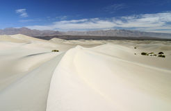 Sand Dunes in Death Valley Stock Photography