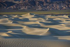 Sand Dunes – Death Valley. The Death Valley Sand Dunes lit by the sunset. Fields of yellow flowers and colorful mountains act as a backdrop to this royalty free stock images