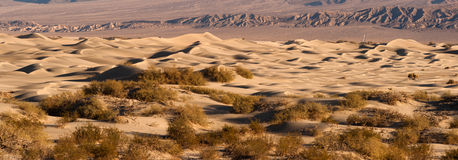 Sand Dunes Death Valley Desert Mesquite Flat Grapevine Mountains Stock Images