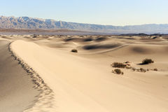 Sand Dunes in Death Valley. Sand dunes and mountain in Death Valley Royalty Free Stock Photo
