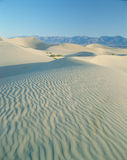 Sand Dunes, Death Valley National Monument, CA Stock Images