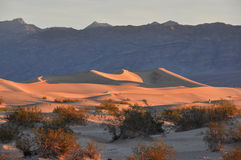 Sand dunes in Death Valley National Park, California, USA Stock Photography