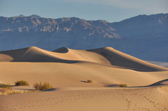 Sand dunes in Death Valley National Park, California, USA Royalty Free Stock Image