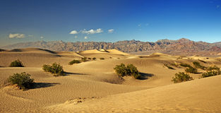 Sand dunes in the Death Valley Stock Image