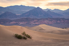 Sand Dunes In Death Valley 4 Royalty Free Stock Image