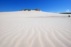 Sand dunes on the desert. Close to the baltic sea in Poland Royalty Free Stock Photo