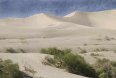 Sand dunes and desert. A landscape view of the sand dunes and desert foliage in Death Valley, California royalty free stock image