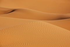 Sand dunes in the desert Royalty Free Stock Photo