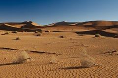 Sand dunes in desert landscape of Namib Stock Photography
