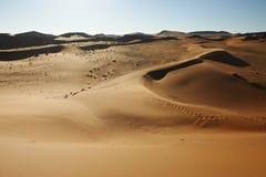 Sand dunes in desert landscape of Namib Royalty Free Stock Photos