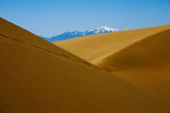 Sand dunes in desert Stock Images