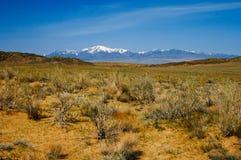Sand dunes in desert national park Altyn-Emel, Kazakhstan. Royalty Free Stock Photo