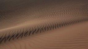 Sand dunes stock video